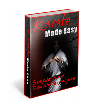 Simple Techniques Of Karate