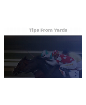 High Quality Horse Tipster Service